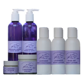 Healing & Relaxing Lavender
